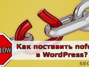 Как поставить nofollow в WordPress?